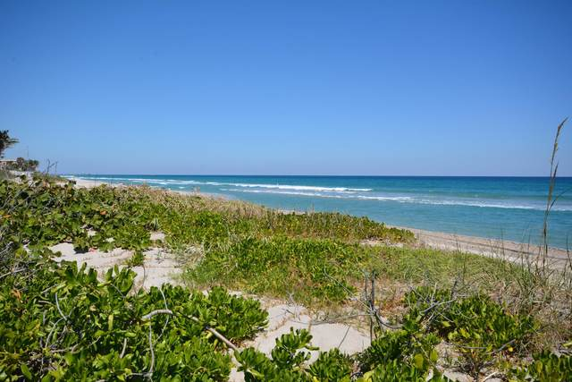 1189 Hillsboro Mile #4, Hillsboro Beach, FL 33062 (MLS #RX-10625146) :: RE/MAX