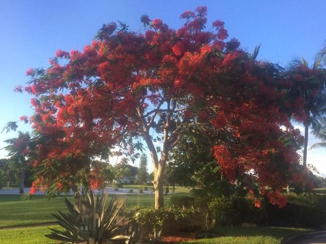 9439 Lotus Court, Boynton Beach, FL 33436 (MLS #RX-10627825) :: Laurie Finkelstein Reader Team