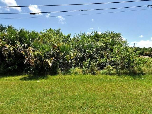 982 SW Alcantarra Boulevard, Port Saint Lucie, FL 34953 (#RX-10631855) :: The Reynolds Team/ONE Sotheby's International Realty