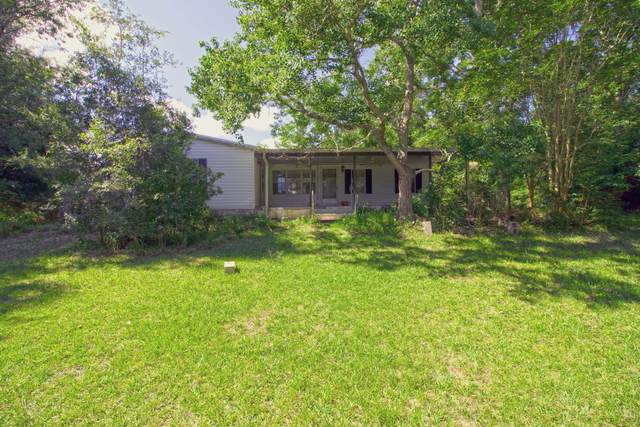 29105 SW 30th Avenue, Gainesville, FL 32653 (MLS #RX-10633212) :: Berkshire Hathaway HomeServices EWM Realty