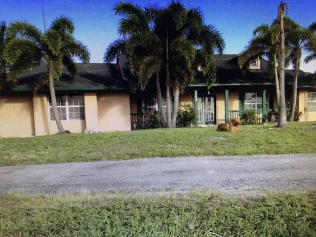 4245 148th Terrace N, Loxahatchee Groves, FL 33470 (#RX-10635263) :: Ryan Jennings Group