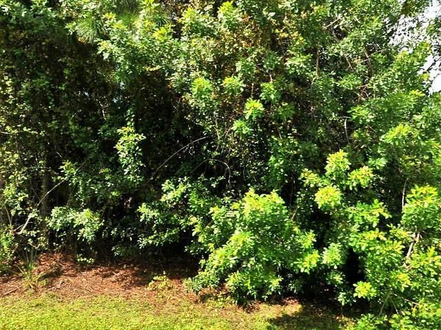 1865 SW Capehart Avenue, Port Saint Lucie, FL 34953 (MLS #RX-10635652) :: Lucido Global