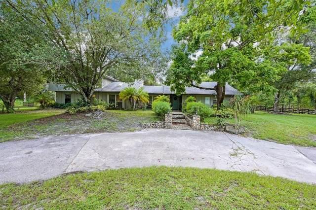 11020 81st Court N, Palm Beach Gardens, FL 33412 (#RX-10639204) :: Ryan Jennings Group