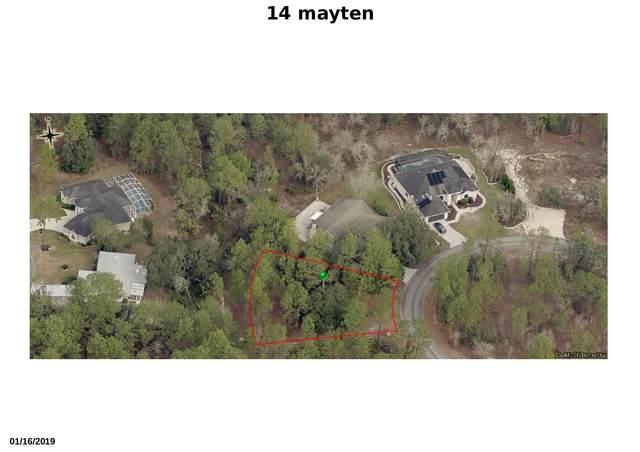 14 Mayten Court W, Homosassa, FL 34446 (#RX-10643489) :: Heather Towe | Keller Williams Jupiter