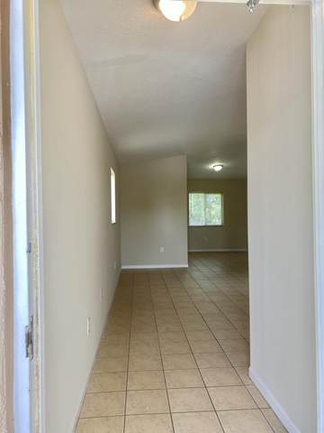 3770 N Jog Road #201, West Palm Beach, FL 33411 (#RX-10646057) :: Realty One Group ENGAGE