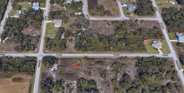 29201 Poe Street, Punta Gorda, FL 33982 (#RX-10648673) :: Baron Real Estate