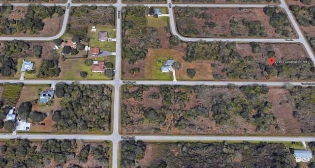 29464 Goodhue Street, Punta Gorda, FL 33982 (MLS #RX-10648690) :: Castelli Real Estate Services