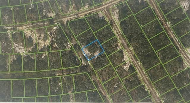 295 Blue Horizon Drive, Lake Placid, FL 33852 (#RX-10656114) :: Heather Towe | Keller Williams Jupiter
