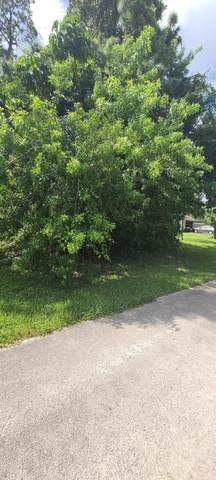6601 Santa Clara Boulevard, Fort Pierce, FL 34951 (#RX-10657489) :: Ryan Jennings Group