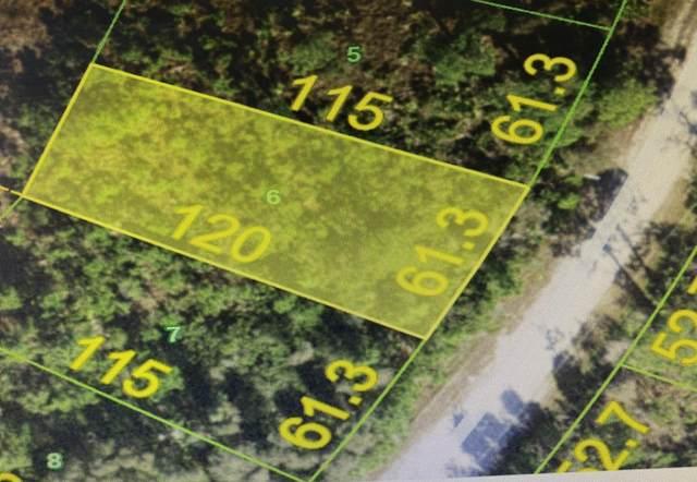 12075 Platano Drive, Punta Gorda, FL 33955 (MLS #RX-10657613) :: Berkshire Hathaway HomeServices EWM Realty