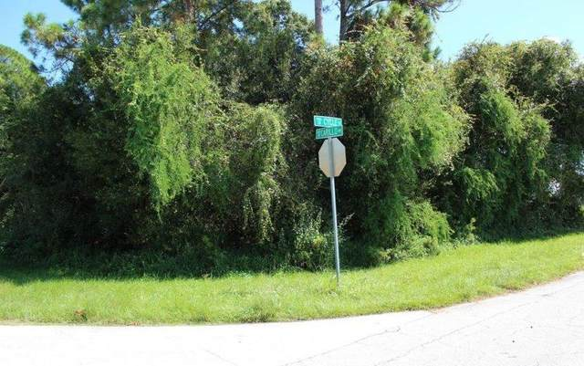 1638 SW Carillo Avenue, Saint Lucie West, FL 34953 (MLS #RX-10659202) :: Berkshire Hathaway HomeServices EWM Realty