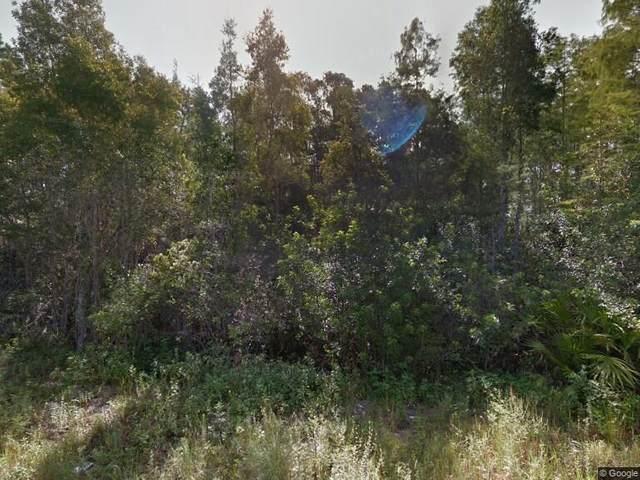 1013 Lisbon Avenue, Lehigh Acres, FL 33974 (#RX-10662189) :: Treasure Property Group
