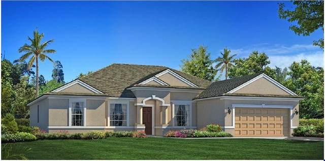 3785 SW Findlay Street, Port Saint Lucie, FL 34953 (MLS #RX-10662740) :: Berkshire Hathaway HomeServices EWM Realty