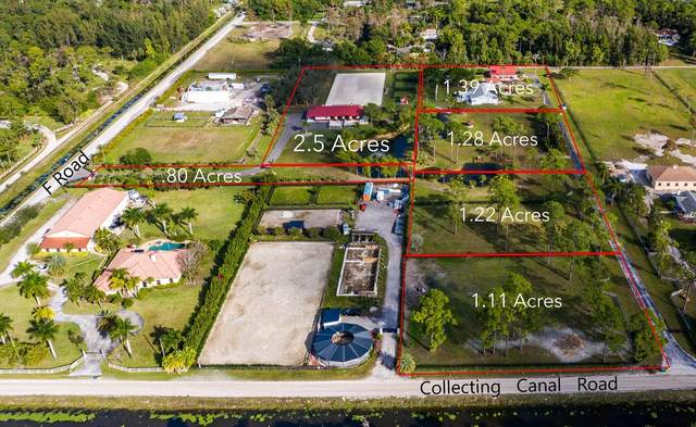 841 Quail Road, Loxahatchee Groves, FL 33470 (#RX-10664084) :: Ryan Jennings Group