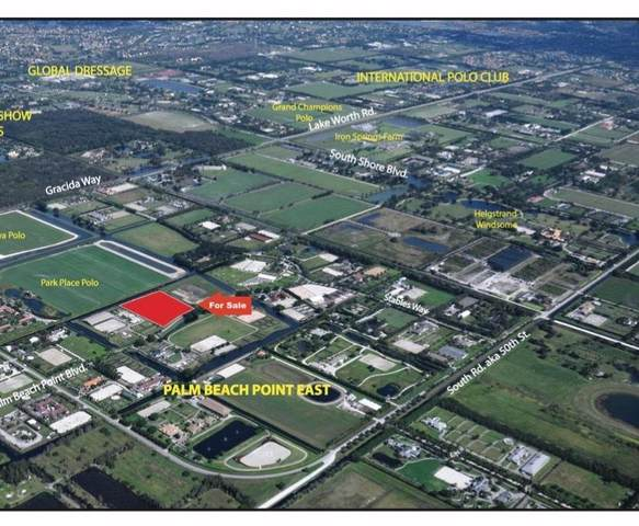 14655 Palm Beach Point Boulevard, Wellington, FL 33414 (MLS #RX-10665232) :: United Realty Group