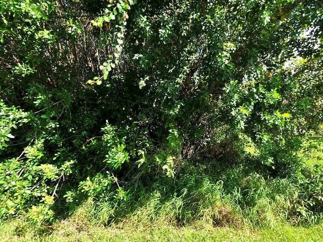 1617 SW Hextel Avenue, Port Saint Lucie, FL 34953 (MLS #RX-10665554) :: Berkshire Hathaway HomeServices EWM Realty