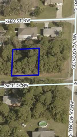 1415 Pace Drive NW, Palm Bay, FL 32907 (MLS #RX-10665647) :: Berkshire Hathaway HomeServices EWM Realty