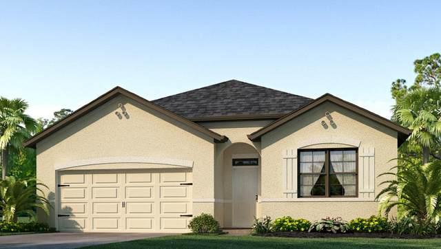 6385 NW Northwood Loop, Port Saint Lucie, FL 34983 (MLS #RX-10666501) :: Miami Villa Group