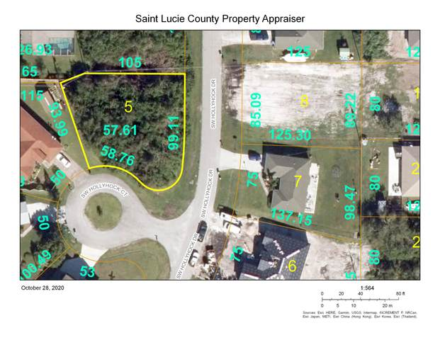 320 SW Hollyhock Drive SW, Port Saint Lucie, FL 34953 (#RX-10666769) :: Manes Realty Group