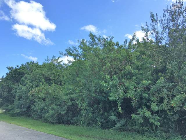 6446 NW Polly Court, Port Saint Lucie, FL 34983 (MLS #RX-10669088) :: Berkshire Hathaway HomeServices EWM Realty