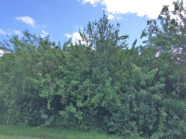 6454 NW Polly Court, Port Saint Lucie, FL 34983 (MLS #RX-10669089) :: Berkshire Hathaway HomeServices EWM Realty