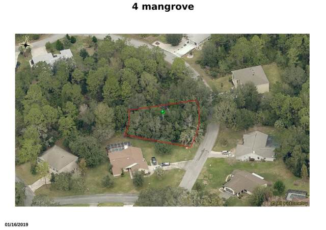 4 Mangrove Court N, Homosassa, FL 34446 (#RX-10671260) :: Treasure Property Group