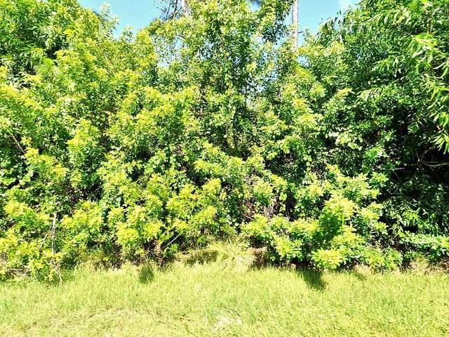 5975 NW Baynard Drive, Port Saint Lucie, FL 34986 (MLS #RX-10671723) :: Berkshire Hathaway HomeServices EWM Realty