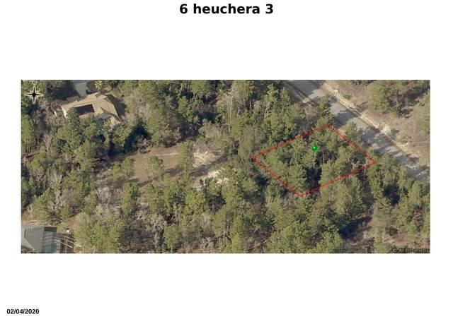 6 Heuchera Court E, Homosassa, FL 34446 (#RX-10678370) :: Treasure Property Group