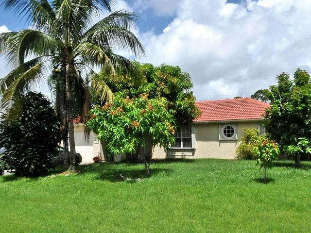 1073 SW Majorca Avenue, Port Saint Lucie, FL 34953 (MLS #RX-10679785) :: THE BANNON GROUP at RE/MAX CONSULTANTS REALTY I
