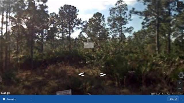1613 Marigold Avenue, Sebring, FL 33875 (#RX-10680758) :: Baron Real Estate