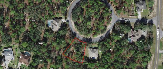 9 Oxhorn Court W, Homosassa, FL 34446 (#RX-10681566) :: Treasure Property Group