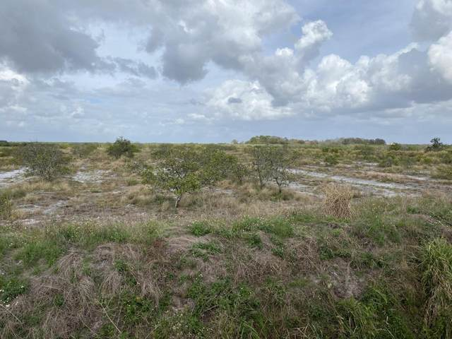 44590 Neal Road, Punta Gorda, FL 33982 (#RX-10685831) :: Treasure Property Group