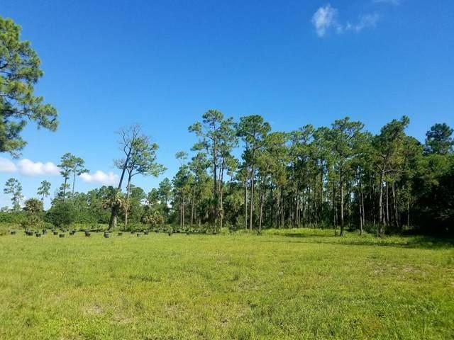 14375 Okeechobee Boulevard, Loxahatchee Groves, FL 33470 (#RX-10687926) :: Treasure Property Group