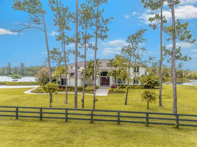 11620 Bald Cypress Lane, Wellington, FL 33449 (#RX-10689010) :: Realty One Group ENGAGE