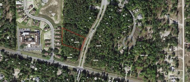 203 Cypress Boulevard E, Homosassa, FL 34446 (#RX-10693965) :: Baron Real Estate