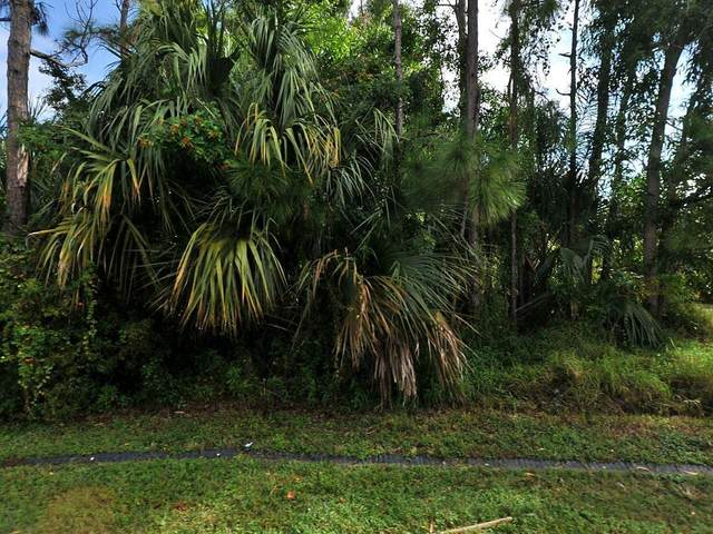 713 NW Sable Street, Port Saint Lucie, FL 34983 (#RX-10694864) :: Realty One Group ENGAGE