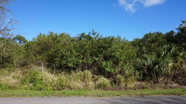 5014 Deleon Avenue, Fort Pierce, FL 34951 (MLS #RX-10696695) :: Miami Villa Group
