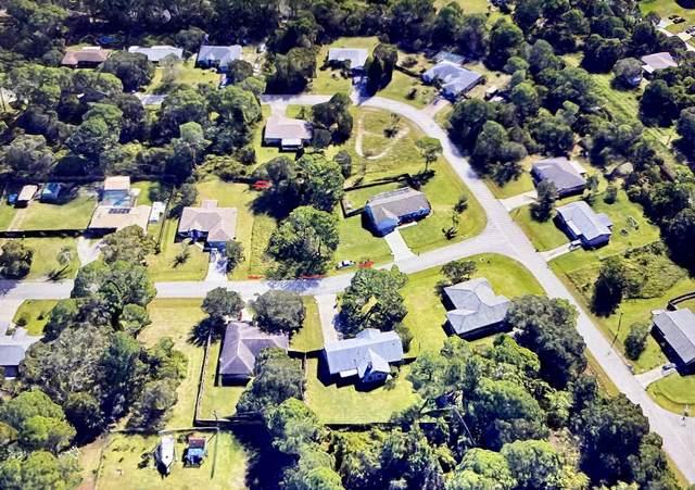 1310 N Rascal Street SE, Palm Bay, FL 32909 (MLS #RX-10696795) :: Castelli Real Estate Services