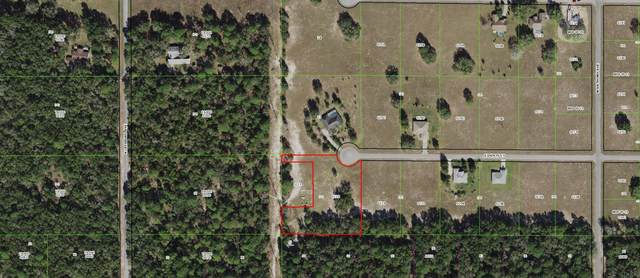 74 E Dusty Court, Hernando, FL 34442 (#RX-10699587) :: DO Homes Group