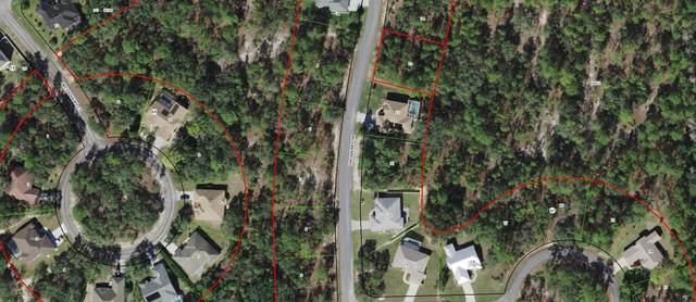 29 Hackberry Drive, Homosassa, FL 34446 (#RX-10699588) :: Baron Real Estate