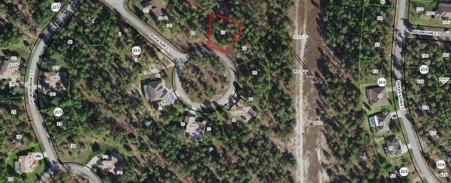25 Ageratum Court, Homosassa, FL 34446 (#RX-10707669) :: Baron Real Estate