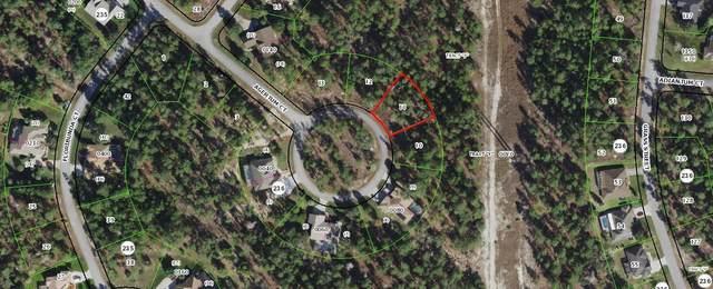 27 Ageratum Court, Homosassa, FL 34446 (#RX-10707679) :: Baron Real Estate