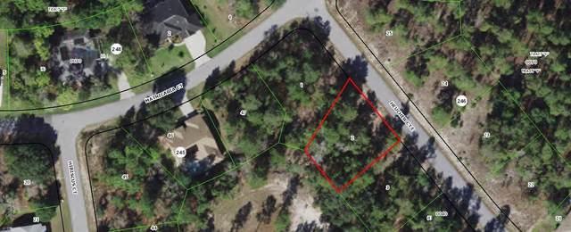 4 Heuchera Court E, Homosassa, FL 34446 (#RX-10707688) :: Baron Real Estate