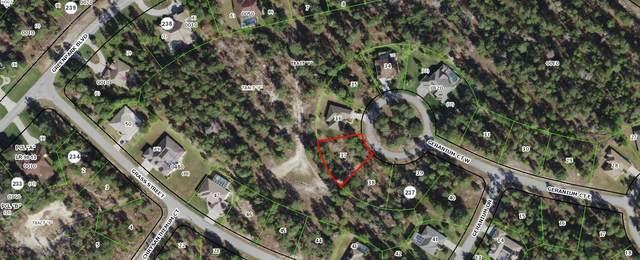 8 Geranium Court W, Homosassa, FL 34446 (#RX-10707692) :: Baron Real Estate