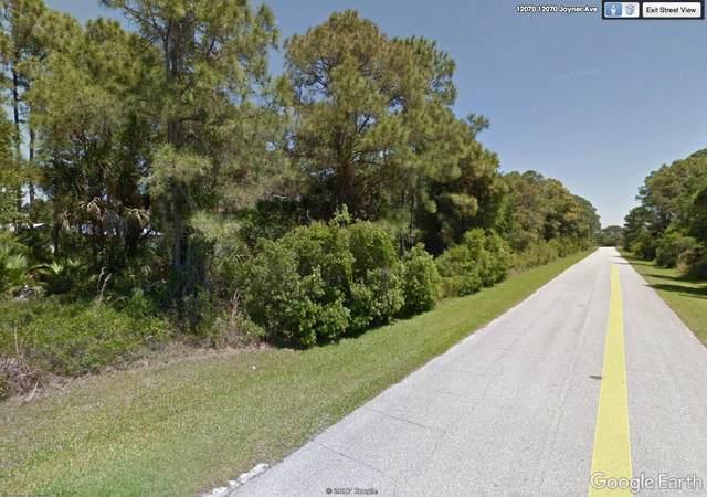 12078 Joyner Avenue, Port Charlotte, FL 33953 (#RX-10709114) :: Treasure Property Group