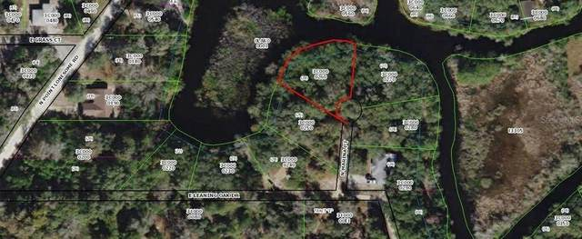 1171 N Marina Point, Inverness, FL 34453 (MLS #RX-10712080) :: Castelli Real Estate Services