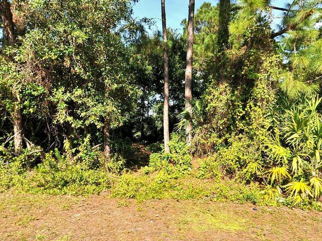 3449 SW Rosser Boulevard, Port Saint Lucie, FL 34953 (#RX-10713141) :: Michael Kaufman Real Estate