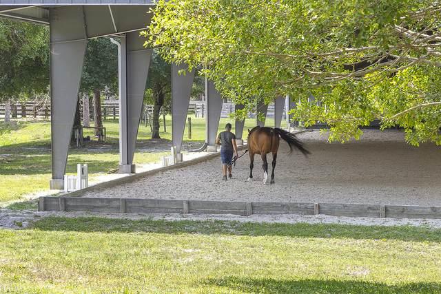 1739 B Road, Loxahatchee, FL 33470 (#RX-10713780) :: Baron Real Estate