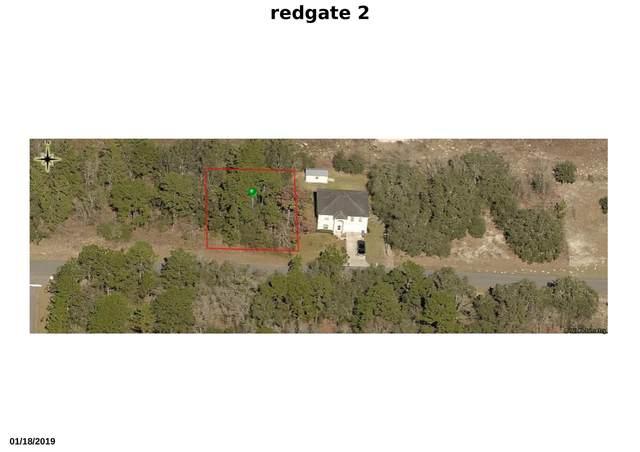 2811 W Redgate Drive, Citrus Springs, FL 34433 (#RX-10714598) :: Baron Real Estate
