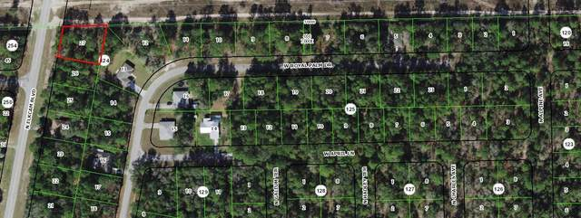 9965 N Elkcam Boulevard, Citrus Springs, FL 34433 (#RX-10714600) :: Baron Real Estate